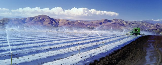Large scale irrigation of strawberry fields in Ventura County.